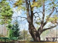 """""""Осенью у дуба"""", 30х40, холст, масло, 2007 г."""