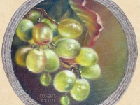 """Twig of grapes"", 14х14, oil, canvas, decorative frame 2014"