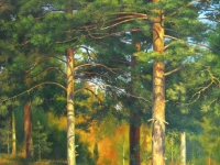"Ivan Shishkin - ""Pine trees, illuminated by the sun"""
